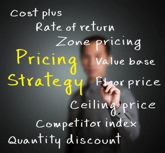 Are You Following These Powerful Laws of Pricing?