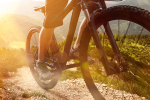 Five Things about Business I've learned from Mountain Biking