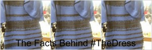 The Facts Behind #TheDress: Social Media Generates Buzz & Sales