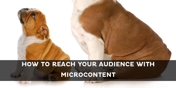 How to Tailor Microcontent to Different Audiences