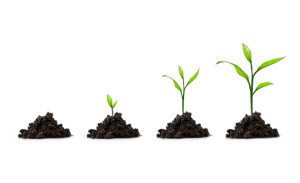4 Stages of an Effective Lead Generation Process